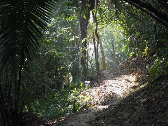 Hiking at Black Rock Lodge in San Ignacio, Belize