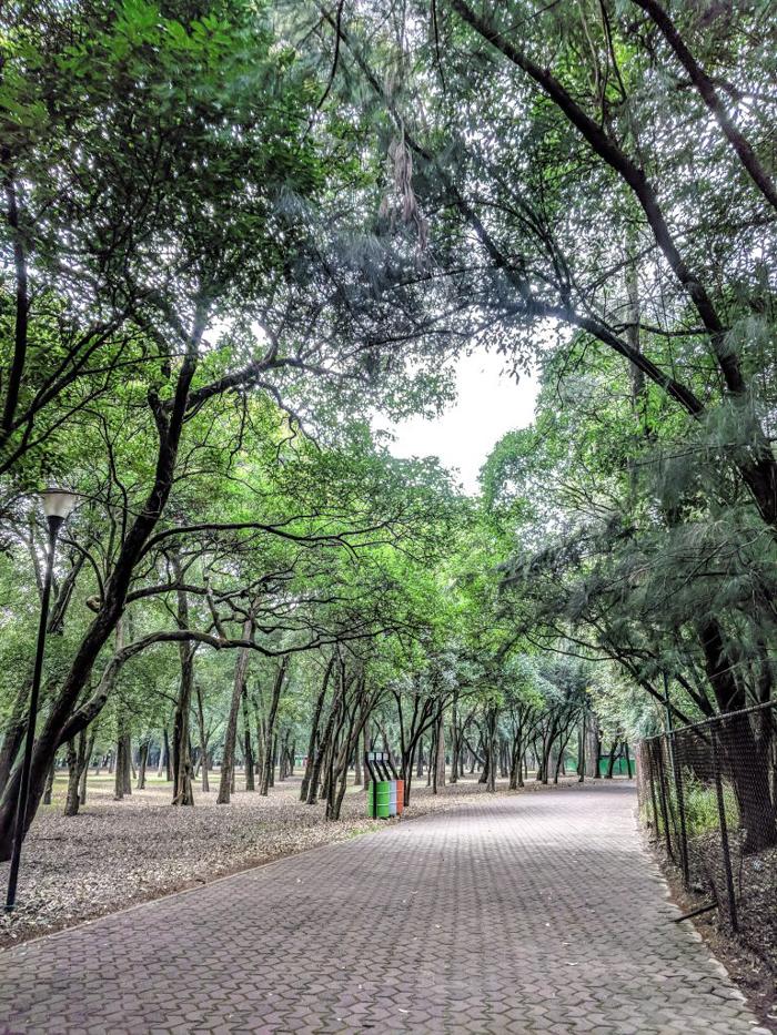 17 Things That Shocked Me in Mexico | Mexico City, Oaxaca de Juarez | Bosque de Chapultepec |Chapultepec Forest and Castle