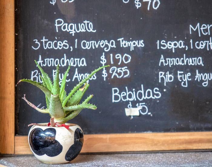 17 Things That Shocked Me in Mexico | Mexico Coaxaca de Juarez | Food Prices