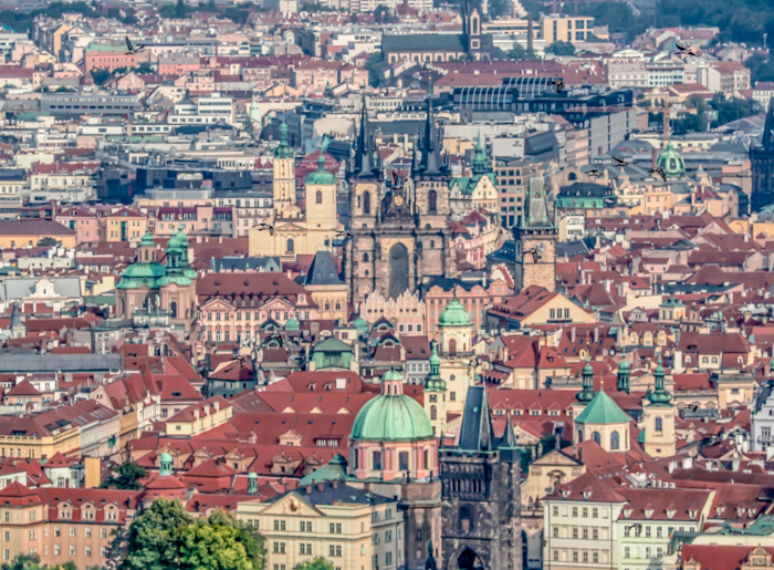 Czeching Out the Best of Prague in 3 Days | Czech Republic | Petrin Tower, Petrin Hill, Best views in Prague, View of city center