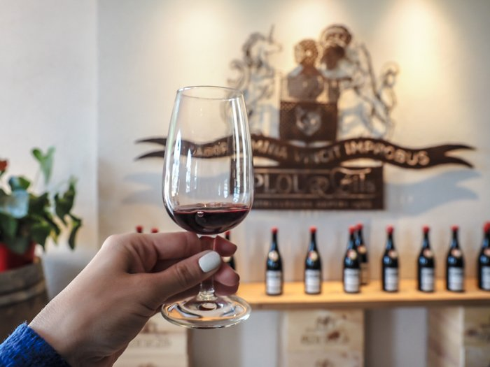 7 France-tastic Things to Do in the Loire Valley | wine tasting at Plou et Fils #winetasting #loirevalley #france #wine