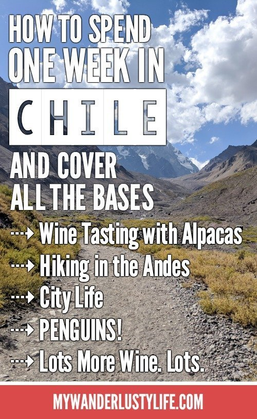 How to Spend One Week in Chile and Cover All the Bases   Santiago and Valparaiso   Wine tasting and hiking in the Andes Mountains   Penguins and more wine   #chile #hiking #wine #penguins #santiago #valparaiso