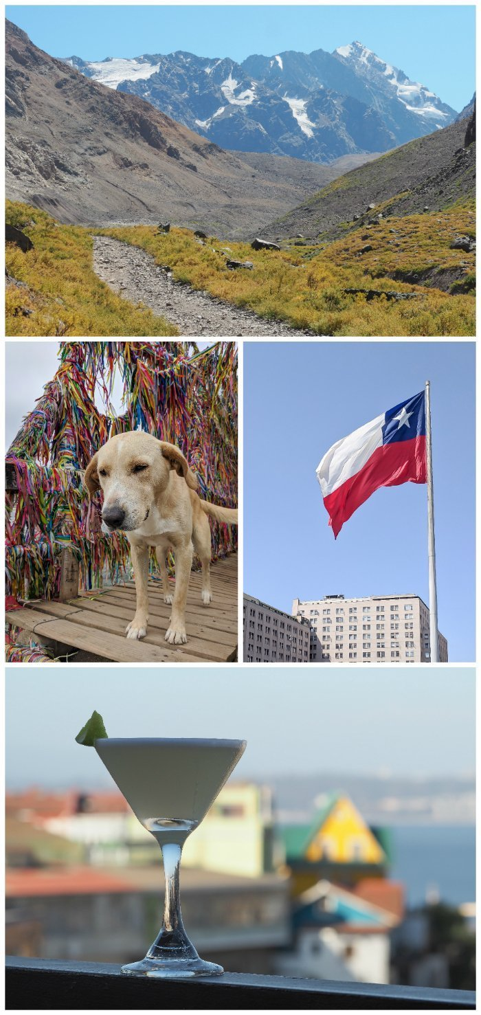 How to Spend One Week in Chile and Cover All the Bases   Where to stay in Chile, Santiago and Valparaiso #chile #santiago #whattodoinchile #weekinchile #valparaiso #wheretostay #winetasting #alpacas #penguins #streetart