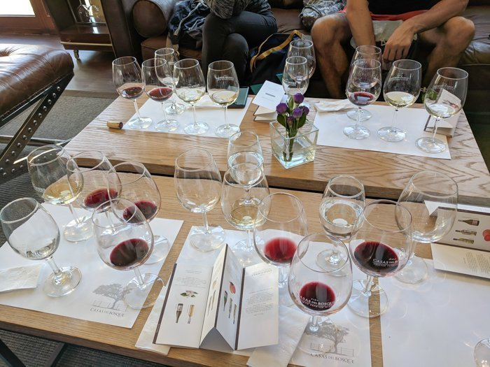 Our glasses at Casas del Bosque winery | Wine Tasting in Chile: Casablanca vs. Maipo Valley | How to decide where to go wine tasting in Chile | Casablanca valley wineries | #chile #wine #winetasting #vineyard #casasdelbosque #casablanca