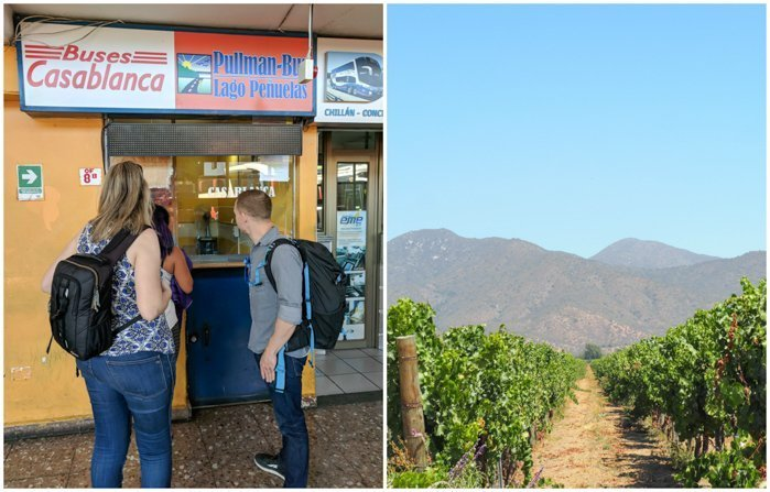 Our group at Vina Emiliana winery | Wine Tasting in Chile: Casablanca vs. Maipo Valley | How to decide where to go wine tasting in Chile | Casablanca valley wineries | #chile #wine #winetasting #vineyard #emiliana #casablanca