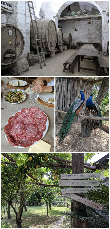5 days in sorrento, italy + amalfi coast, food tour, mozzarella lesson, il convento #sorrento #italy #limoncello #foodtour