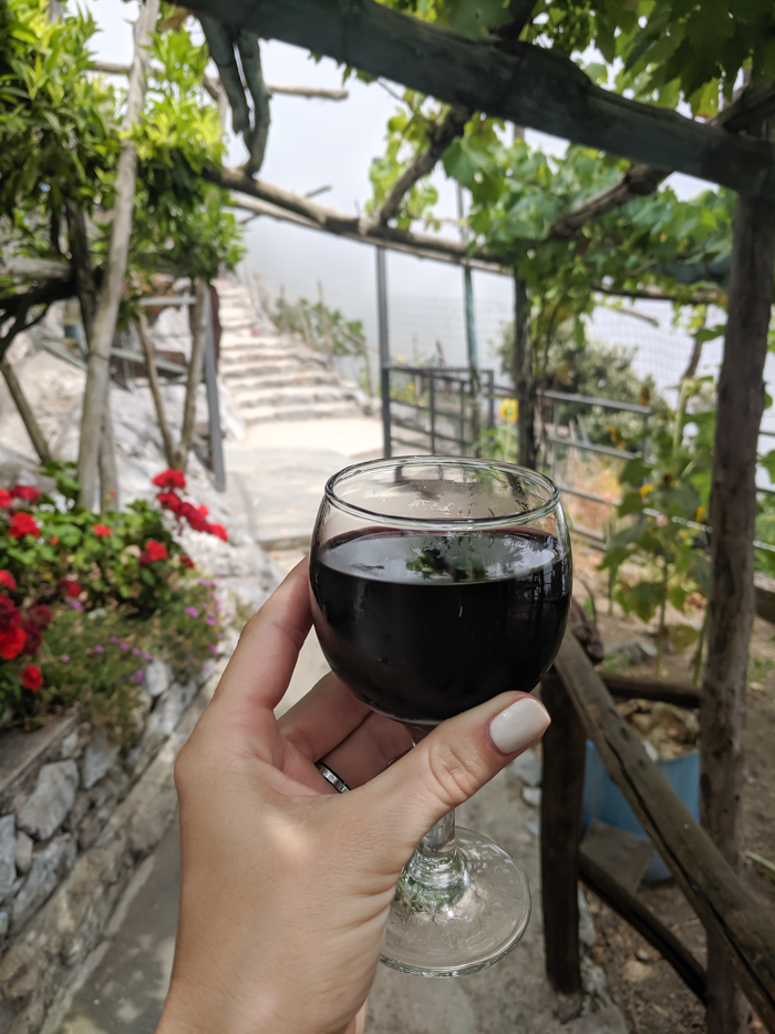 Homemade wine at a bed and breakfast break along the Amalfi Coast | Hiking the Path of the Gods from Sorrento, Italy on the Amalfi Coast | #pathofthegods #sorrento #amalficoast #hiking #italy