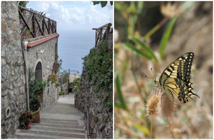 Hiking and butterfly the Path of the Gods from Sorrento, Italy on the Amalfi Coast | Amazing views from the hike #pathofthegods #sorrento #amalficoast #hiking #italy