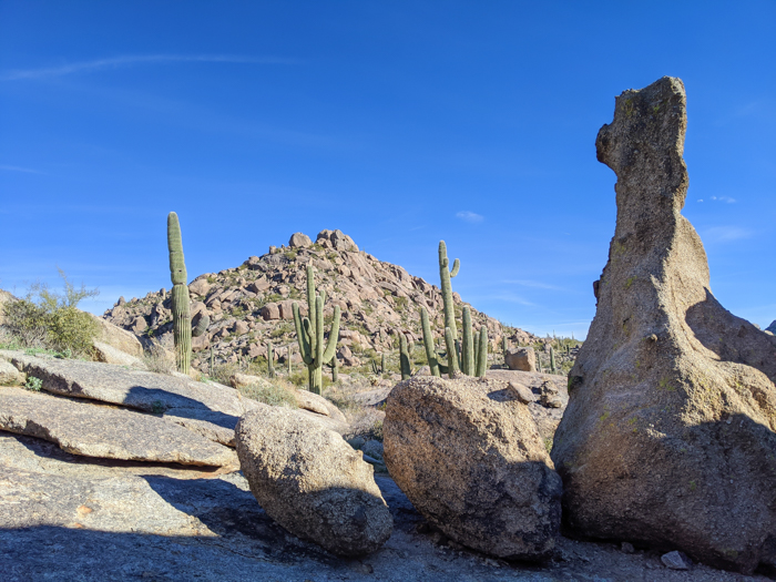 McDowell Sonoran Preserve / Offseason Arizona: 8 Reasons to Visit Scottsdale in the Winter / Scottsdale, Arizona / #scottsdale #arizona #wintertravel #desert