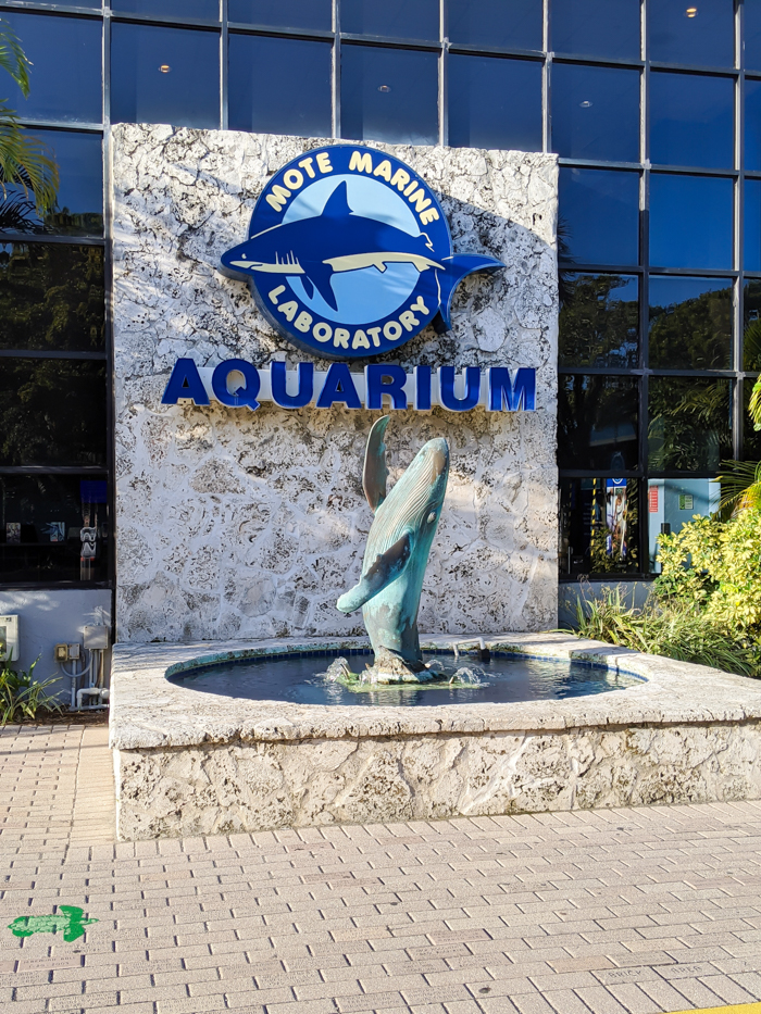 Mote Marine Aquarium / 3 days in Sarasota, Florida