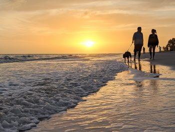 2 days in Fort Myers, Florida, a fun weekend itinerary: #fortmyers #florida #gulfcoast #sanibelisland #ftmyers #fortmyersflorida #floridabeach
