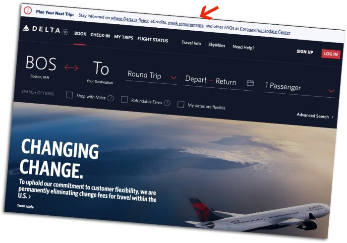 Air travel tips for traveling during the pandemic: Delta Airlines Covid policies on their website