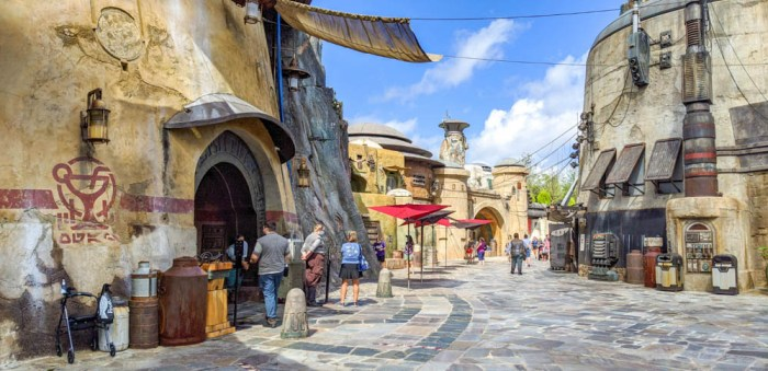Visiting Disney World During the Pandemic: Everything You're Dying to Know | Disney World in 2020, what it's like to visit disney world right now. | Oga's Cantina at Star Wars: Galaxy's Edge at Hollywood Studios