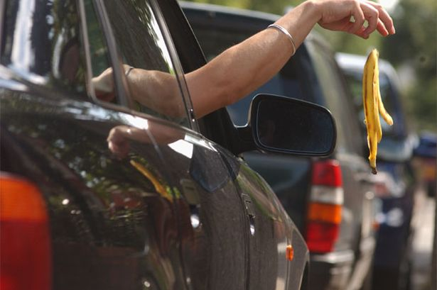 Should litter bug motorists be fined?