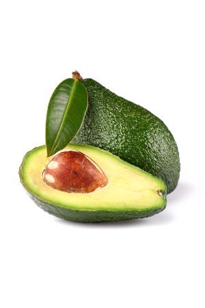 Pianta di Avocado B. L. in vaso - Elevata produttività - MyWLife