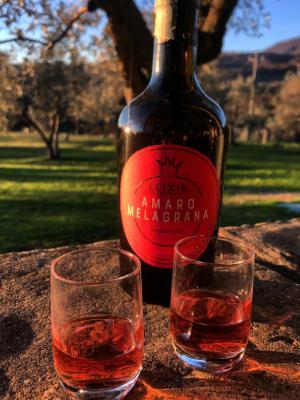"""Questo fantastico Amaro al Melograno """"Elixir Barbarossa"""" è prodotto dall'Azienda Barbarossa direttamente dalle proprie melagrane biologiche coltivate in Toscana. Perfetto per essere gustato dopo il pasto o abbinato a degli ottimi cocktail."""