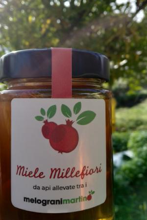 Miele millefiori in confezione da 400 grammi prodotto da Api allevate tra i Melograni Martino di Monteroni di Lecce. Colore ambrato, profumo fresco e delicato, sapore balsamico