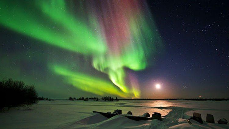 Christmas Yukon Lights