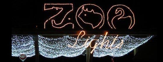 Brookfield Zoo Night Lights