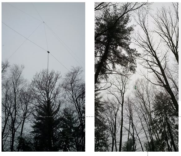 Delta Loop and Vertical Dipole (right)