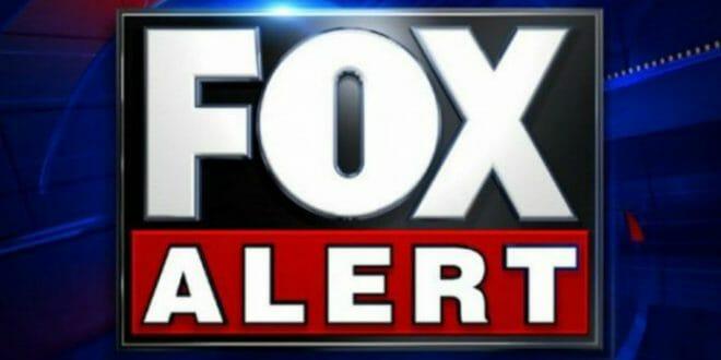 Fox News Alert - N1FD Foxes Roaming Nashua