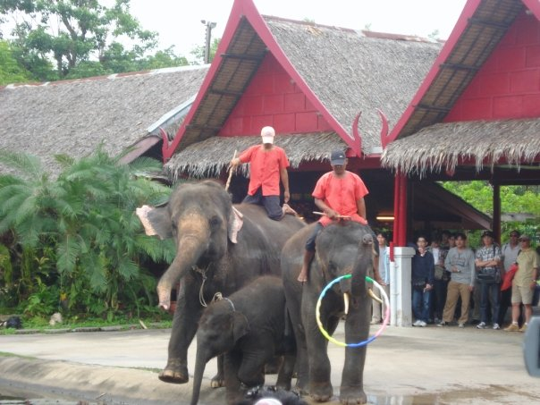Making the Most of Your Trip to Thailand