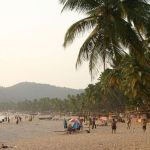The Best of Goa: Your Go-to Beach Guide
