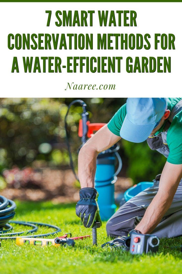 Smart Water Conservation Methods For A Water-Efficient Garden