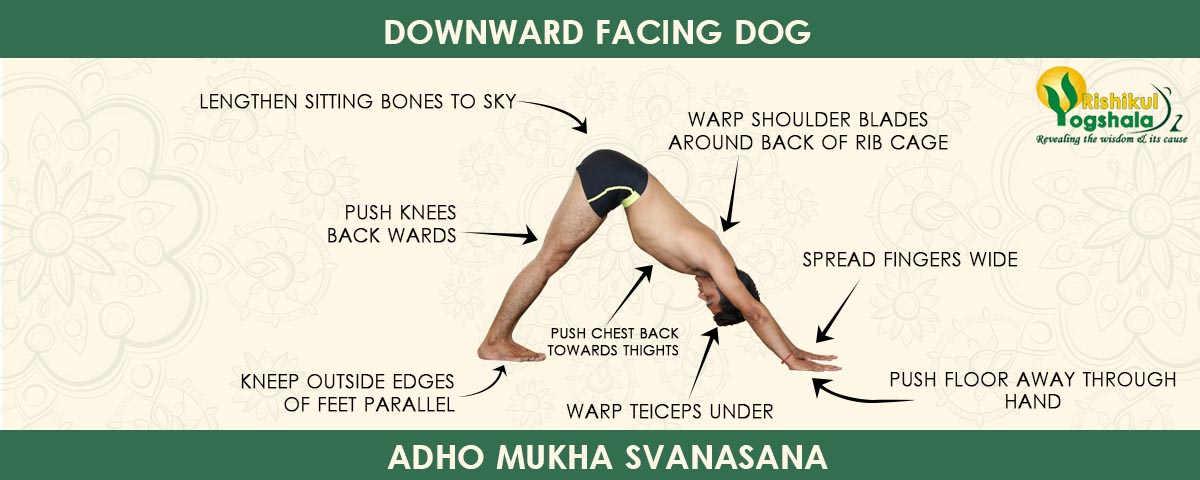 Downward-facing-Dog