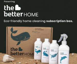 Eco-Friendly Home Cleaners