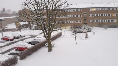 صورة الدنمارك على موعد مع عاصفة ثلجية قوية.. والشرطة تحذر
