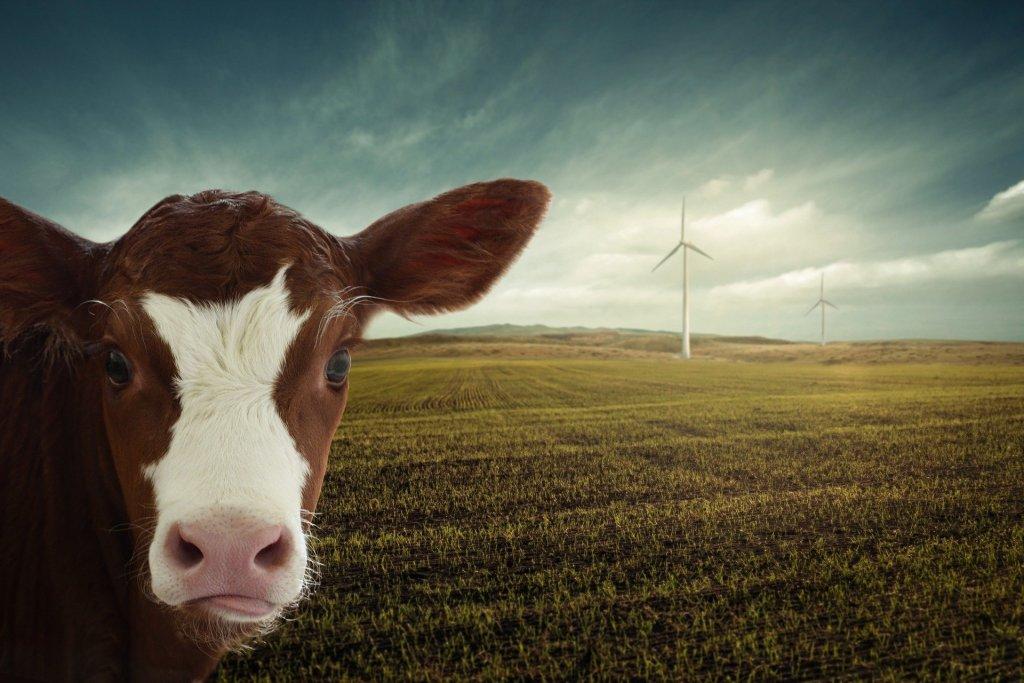 CO2 Einsparkonzept