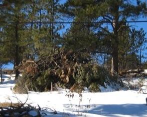 Slash piles should not be built beneath utility lines