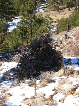 Well-constructed slash pile