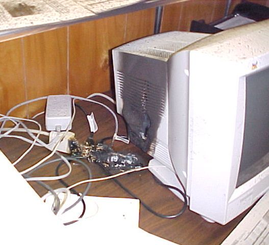 This desktop computer, unprotected by a power suppressor, was damaged by a power surge.