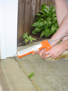 All holes, cracks, and gaps in a home should be sealed to keep out rodents
