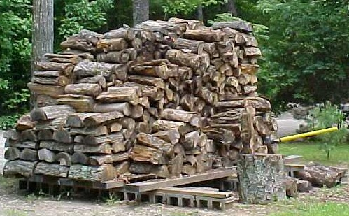Firewood drying out in the sun
