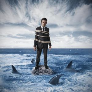 Purchased Graphic__Business Man Risk Sharks Compressed 3.4.15