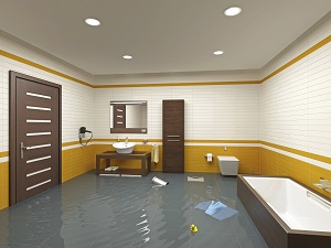 Dealing with Mold in Your Bathroom in Savage