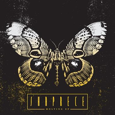Shaprece - Molting EP on www.nadamucho.com