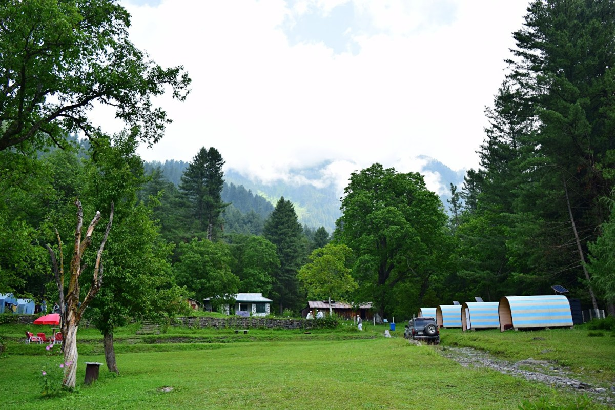 An Escape to the Jungle - Sharan, Kaghan Valley.