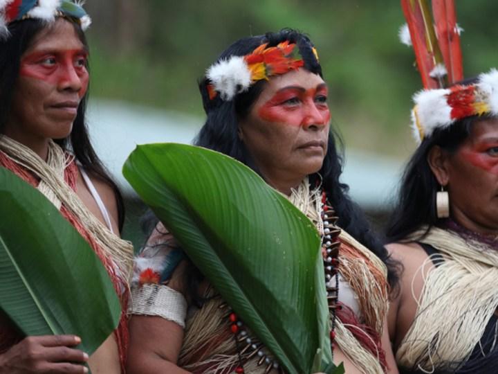 waorani, ecuador, amazonia, indigenous