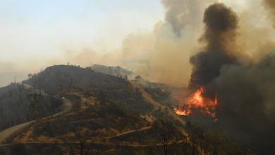 Photo of الدرك الوطني: توقيفات جديدة في قضية حرائق الغابات