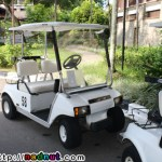 A Bintany Time! Part 4: Golf Buggies and You