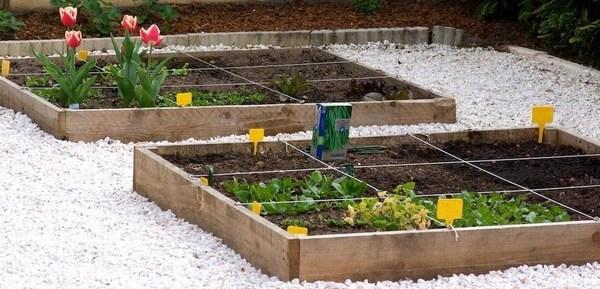 faire son jardin ou son potager en
