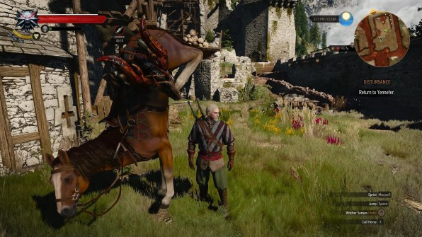 The Witcher Roach 01