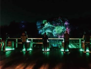 魔法の宝石を探す体験型マルチメディア・ナイトウォーク「アイランド イルミナ」も同時OPEN!大自然の中で繰り広げられる光と映像の冒険の旅を体感して