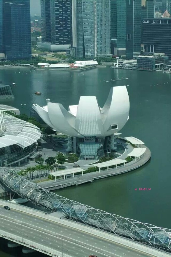 Singapore Flyer - Art Science Museum