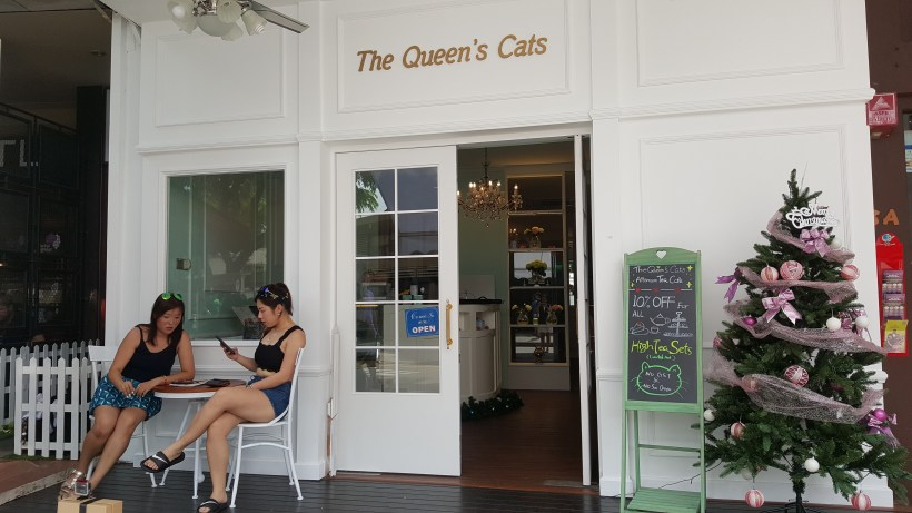The Queen's Cats Cafe - Al Fresco Seats