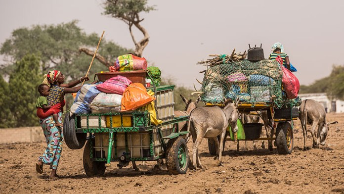 World Bank Provides $375m to Boost Efforts Towards Realize Potential of Pastoralism in the Sahel